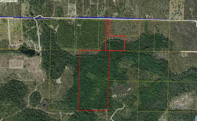 Vacant NW Twin Ponds Road #0, CALHOUN COUNTY, FL 32421 (MLS #272836) :: The Elite Group | Xcellence Realty Inc