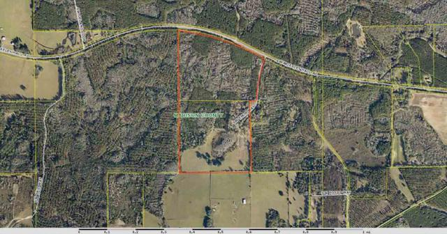 Vacant SW Moseley Hall, Madison County, FL 32331 (MLS #283942) :: Best Move Home Sales