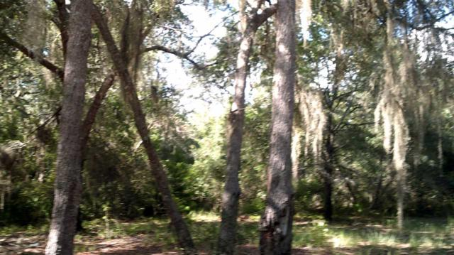 Lot 7F S Gulf Manor, Perry, FL 32348 (MLS #283960) :: Best Move Home Sales