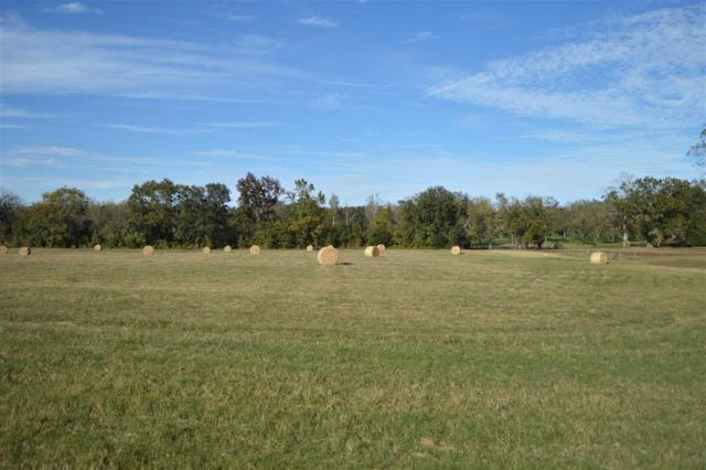 00 Timber, Monticello, FL 32344 (MLS #287717) :: Purple Door Team