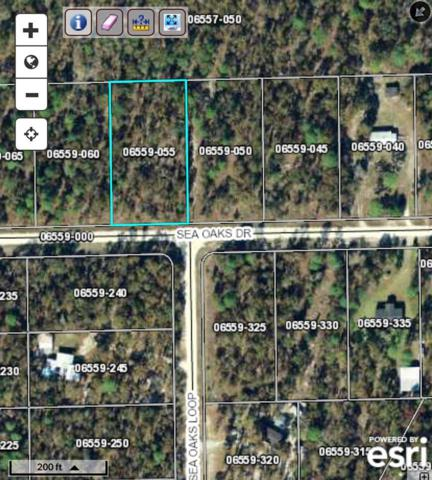 000 Sea Oaks, Keaton Beach, FL 32348 (MLS #289804) :: Best Move Home Sales
