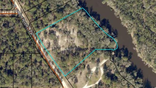 823 NE Timber River, Lee, FL 32059 (MLS #290306) :: Best Move Home Sales