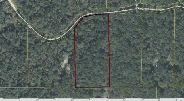 XXX E Buckhorn, Greenville, FL 32331 (MLS #291285) :: Best Move Home Sales
