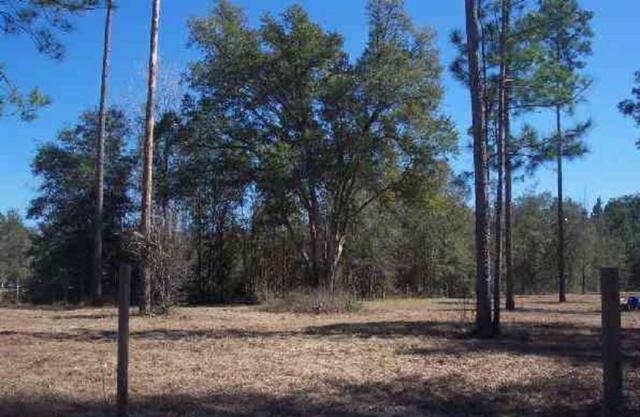 95 Windsong, Crawfordville, FL 32327 (MLS #296288) :: Best Move Home Sales