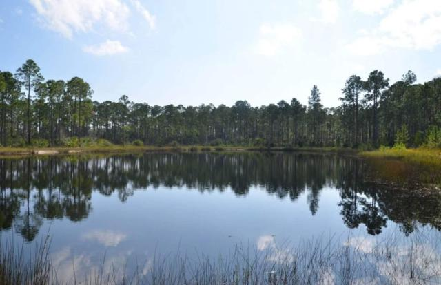State Road 65 -, East Point, FL 32328 (MLS #296658) :: Best Move Home Sales