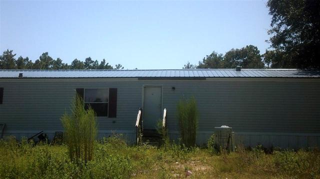 13785 N Gulf, Perry, FL 32348 (MLS #296741) :: Best Move Home Sales
