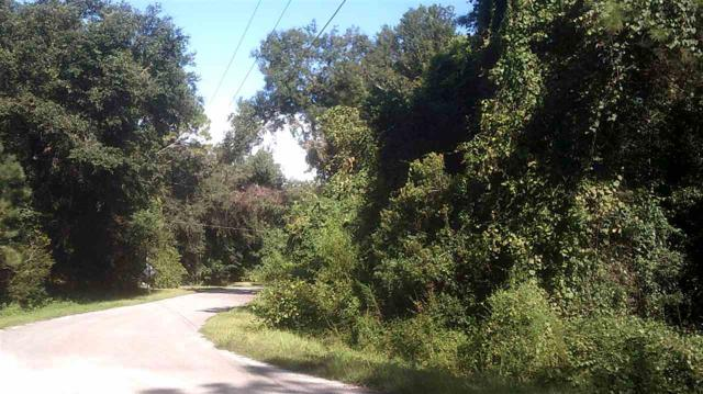 Lot 4B Fortner, Perry, FL 32347 (MLS #296753) :: Best Move Home Sales
