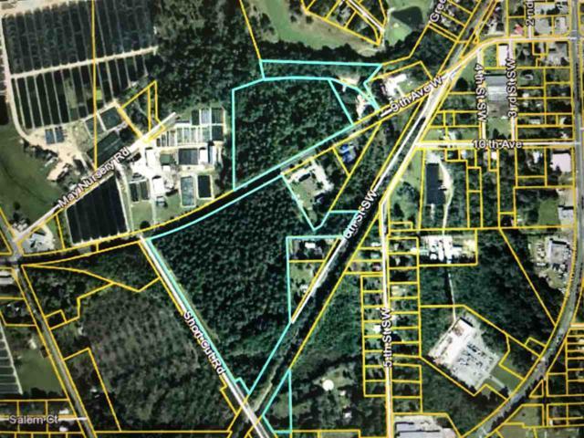 XXX Havana Hwy, Havana, FL 32333 (MLS #298901) :: Best Move Home Sales