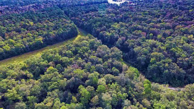 xx River Plantation, Crawfordville, FL 32327 (MLS #299649) :: Best Move Home Sales