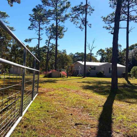 2259 Red Oak, Perry, FL 32348 (MLS #299720) :: Best Move Home Sales