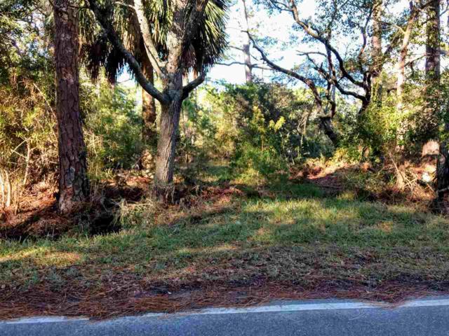 175 Levy Bay, Panacea, FL 32346 (MLS #300254) :: Best Move Home Sales