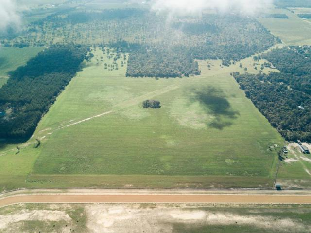Lot 11 NE 120th Avenue -, Other Florida, FL 32621 (MLS #300355) :: Danielle Andrews Real Estate
