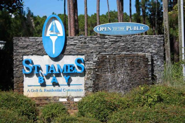 166 Royal Tern, St James, FL 32323 (MLS #300526) :: Best Move Home Sales
