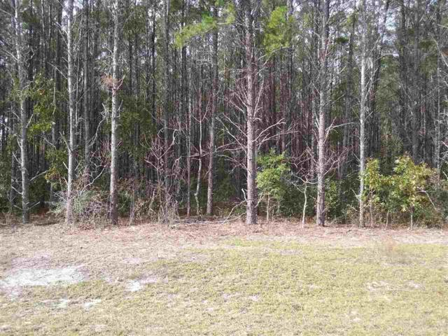 000 Caribbean, Perry, FL 32348 (MLS #300604) :: Best Move Home Sales