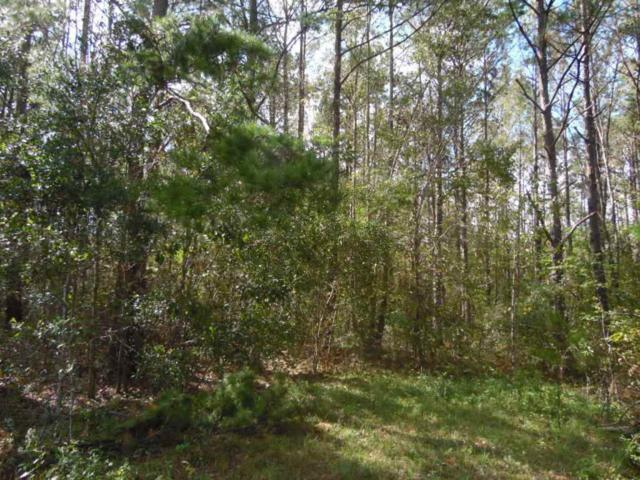 Lot 10 Spring Meadows, Quincy, FL 32351 (MLS #301370) :: Best Move Home Sales