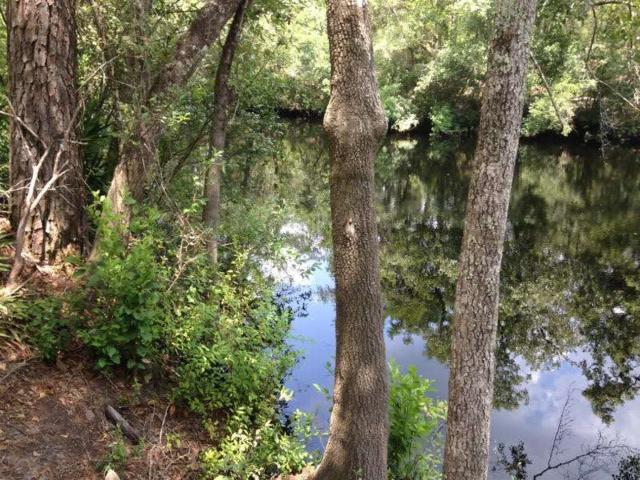 Lot 63W Seminole, Sopchoppy, FL 32358 (MLS #301425) :: Best Move Home Sales