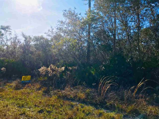 000 Antler Lane, Perry, FL 32347 (MLS #301532) :: Best Move Home Sales