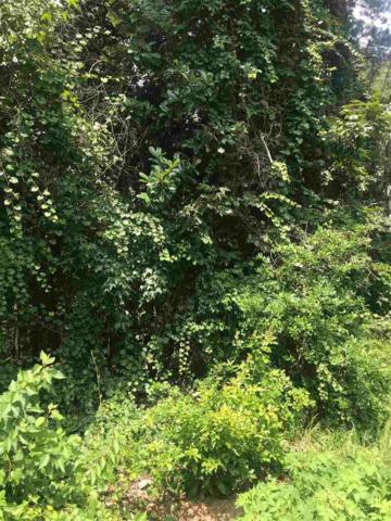 Lot 10 Whitney Drive N, Tallahassee, FL 32308 (MLS #301715) :: Best Move Home Sales