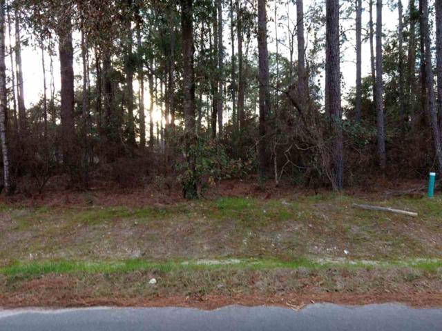 36 Ted Lott, Crawfordville, FL 32327 (MLS #302038) :: Best Move Home Sales