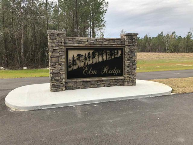 Lot 19 Elm Ridge Loop, Crawfordville, FL 32327 (MLS #302165) :: Best Move Home Sales
