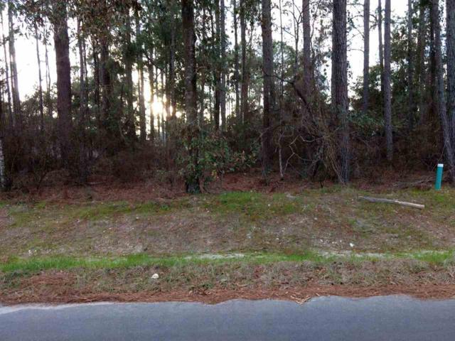 16 Ted Lott, Crawfordville, FL 32327 (MLS #302281) :: Best Move Home Sales