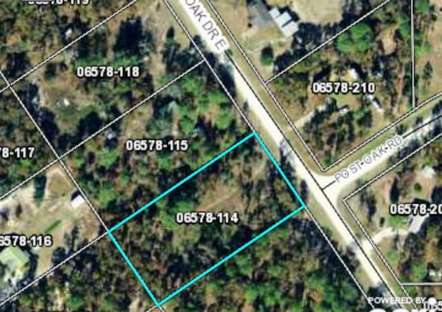 000 E Royal Oak, Perry, FL 32348 (MLS #303364) :: Best Move Home Sales