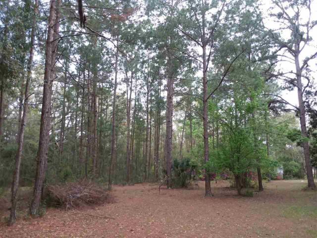 198 NE Evergreen, Pinetta (Madison County), FL 32350 (MLS #303950) :: Best Move Home Sales