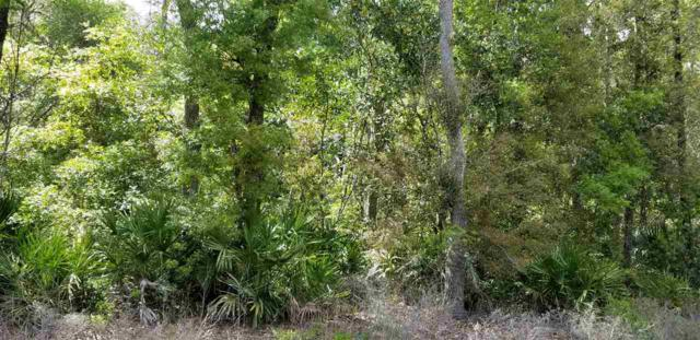 Vacant Forest, Perry, FL 32348 (MLS #304703) :: Best Move Home Sales