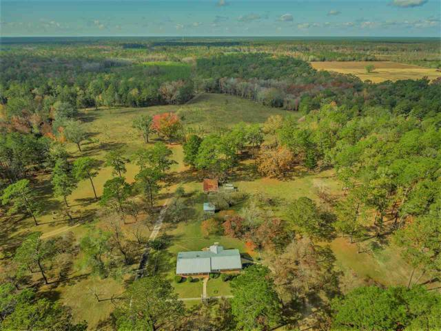 624 Wakulla Springs, Crawfordville, FL 32327 (MLS #305386) :: Best Move Home Sales