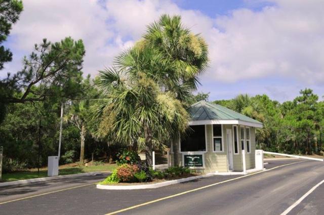 1864 Sea Oat Drive, St George Islan, FL 32328 (MLS #306554) :: Best Move Home Sales
