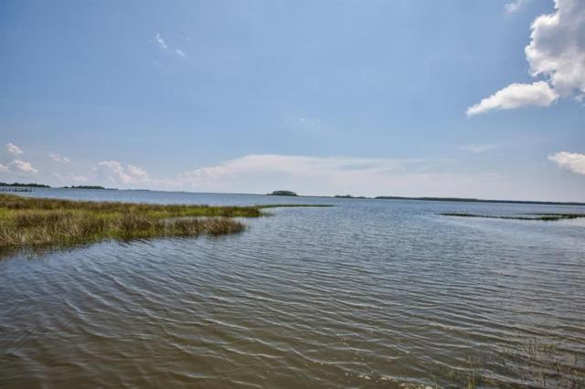 xx Levy Bay, Panacea, FL 32346 (MLS #306757) :: Best Move Home Sales