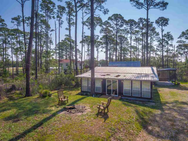 26 Lakeview Dr, Alligator Point, FL 32346 (MLS #307369) :: Best Move Home Sales