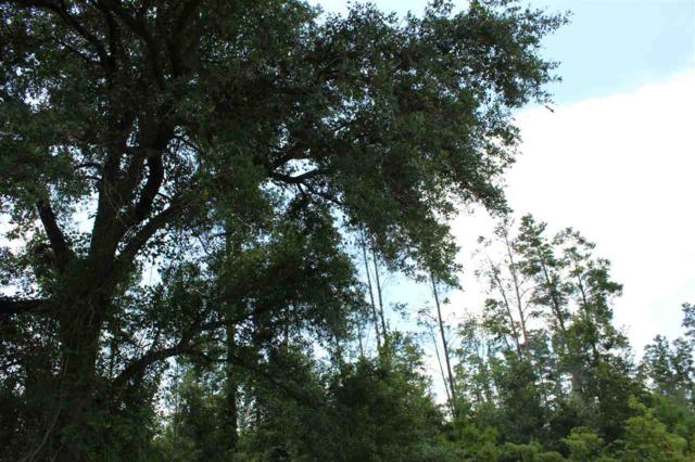 Vacant A SE Geronimo, Madison, FL 32340 (MLS #308355) :: Best Move Home Sales