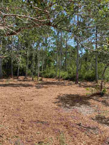 000 W Royal Oak, Perry, FL 32348 (MLS #308358) :: Best Move Home Sales