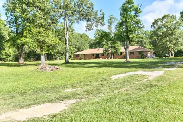 11180 Tung Grove, Tallahassee, FL 32317 (MLS #308719) :: Best Move Home Sales