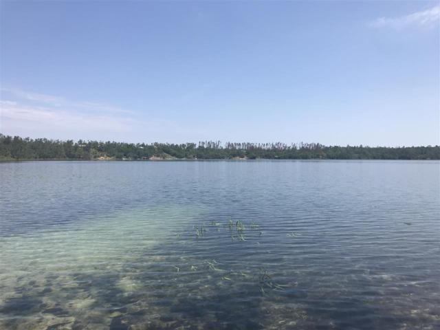 lot 20 A unit 1 Hammond Lake, Other Florida, FL 32438 (MLS #308738) :: Best Move Home Sales