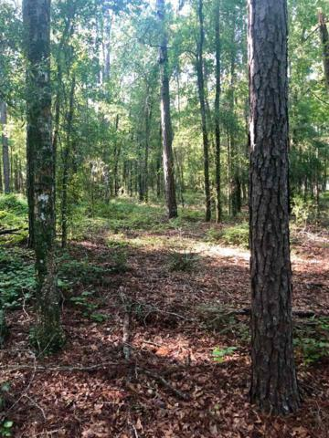 Vacant NE Costmary, Madison County, FL 32340 (MLS #309432) :: Best Move Home Sales