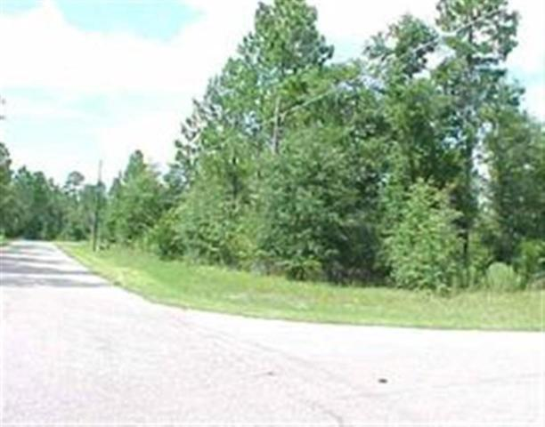 Lot 1 Weeping Willow, Crawfordville, FL 32327 (MLS #309490) :: Best Move Home Sales
