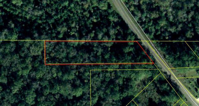 Adolphus Mcmillion, Chattahoochee, FL 32324 (MLS #309611) :: Best Move Home Sales