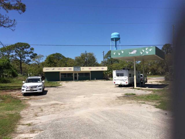 42 Coastal, Panacea, FL 32346 (MLS #309745) :: Best Move Home Sales