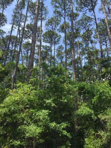 xx Chipola, Panacea, FL 32346 (MLS #309813) :: Best Move Home Sales