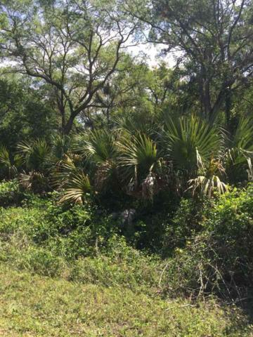 xx Pelican, Panacea, FL 32346 (MLS #309816) :: Best Move Home Sales