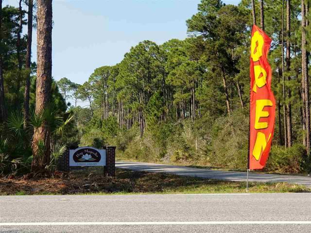 152 Bay Magnolia Court, Carrabelle, FL 32322 (MLS #309873) :: Best Move Home Sales