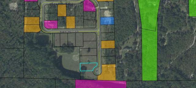 lot 11 Conifer Court, Crawfordville, FL 32327 (MLS #309890) :: Best Move Home Sales