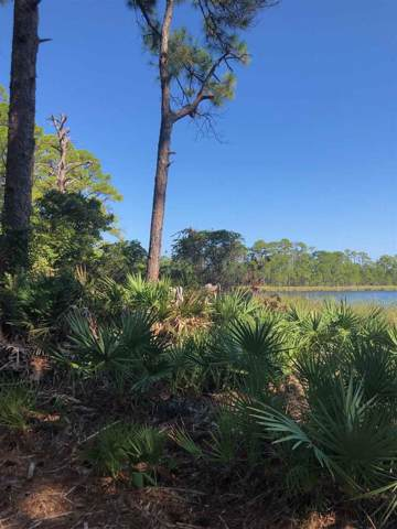 73 Lakeview, Alligator Point, FL 32346 (MLS #311645) :: Best Move Home Sales