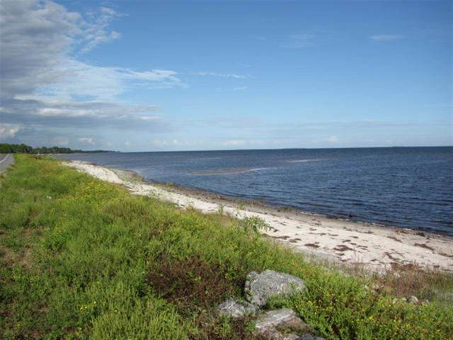Lot 6 Anglers Point Ln, Carrabelle, FL 32322 (MLS #312016) :: Best Move Home Sales