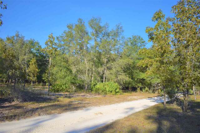 Vacant Fox Hunter, Perry, FL 32348 (MLS #312102) :: Best Move Home Sales