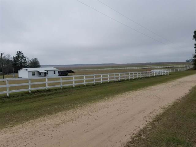 411 NE Hanson, Lee, FL 32059 (MLS #312617) :: Best Move Home Sales