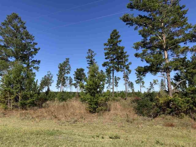 Vacant NE River Trace, Lee, FL 32059 (MLS #312874) :: Best Move Home Sales