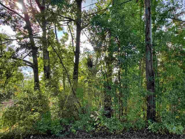 420 Bw Roberts, Quincy, FL 32351 (MLS #313046) :: Best Move Home Sales